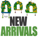 new-arrivals-catagory-box.png